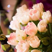 Real Weddings, Wedding Style, pink, Ceremony Flowers, Fall Weddings, Modern Real Weddings, Fall Real Weddings, Modern Weddings, Modern Wedding Flowers & Decor