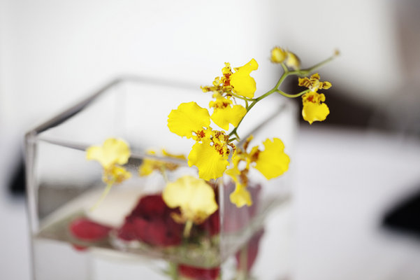 Real Weddings, Centerpieces, Midwest Real Weddings, minnesota weddings, minnesota real weddings