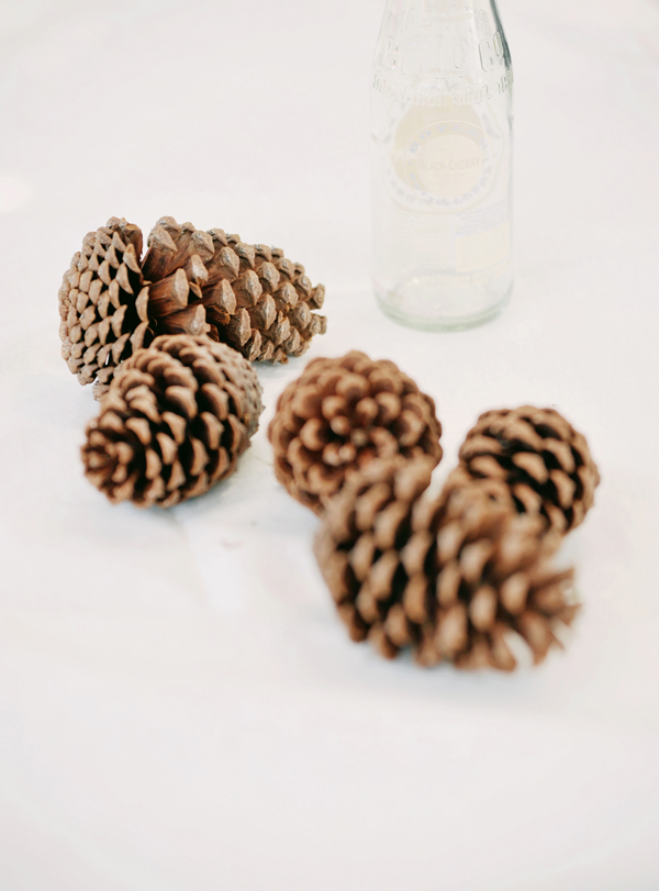 Real Weddings, Eco-Friendly, Romantic, Simple, Fresh, Light, Airy, pine cones