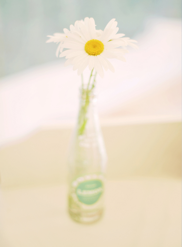 Flowers & Decor, Real Weddings, Centerpieces, Eco-Friendly, Garden Wedding Flowers & Decor, Romantic, Daisy, Simple, Fresh, Light, Airy
