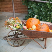 Real Weddings, Wedding Style, Fall Weddings, Rustic Real Weddings, Fall Real Weddings, Rustic Weddings, Pumpkins, Lds wedding, LDS Real WEdding, Autumn Real Wedding, Autumn Weddings, DIY Real Weddings, DIY Weddings, Fall Décor