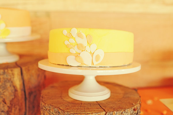 Cakes, Real Weddings, Wedding Style, yellow, Modern Wedding Cakes, Wedding Cakes, Rustic Real Weddings, Midwest Real Weddings, Rustic Weddings
