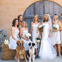 1375619096 thumb 1371241729 real weddings kim and brandt calistoga california 2