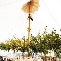 Flowers & Decor, Real Weddings, Wedding Style, Centerpieces, Tables & Seating, West Coast Real Weddings, Classic Real Weddings, Vineyard Real Weddings, Classic Weddings, Vineyard Weddings, Eco-Friendly Wedding Flowers & Decor, Greenery