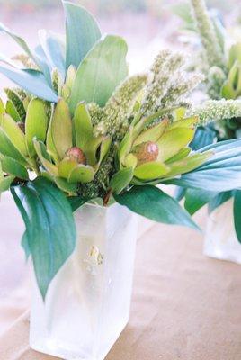 Flowers & Decor, Real Weddings, Wedding Style, green, Centerpieces, West Coast Real Weddings, Classic Real Weddings, Vineyard Real Weddings, Classic Weddings, Vineyard Weddings, Eco-Friendly Wedding Flowers & Decor