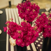 Real Weddings, pink, black, Centerpieces, Modern Real Weddings, Midwest Real Weddings, Modern Weddings, Modern Wedding Flowers & Decor