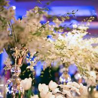 Flowers & Decor, Real Weddings, Wedding Style, white, Centerpieces, Fall Weddings, Modern Real Weddings, Southern Real Weddings, Fall Real Weddings, Glam Real Weddings, Glam Weddings, Modern Weddings, Classic Wedding Flowers & Decor, Glam Wedding Flowers & Decor, Modern Wedding Flowers & Decor, Tulips