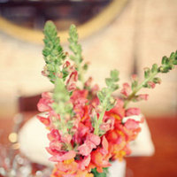 Flowers & Decor, Real Weddings, Wedding Style, red, Centerpieces, Modern Real Weddings, Summer Weddings, West Coast Real Weddings, Summer Real Weddings, Modern Weddings, Modern Wedding Flowers & Decor