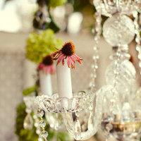 Flowers & Decor, Real Weddings, Wedding Style, Southern Real Weddings, Spring Weddings, Garden Real Weddings, Spring Real Weddings, Garden Weddings, Spring Wedding Flowers & Decor, Chandelier