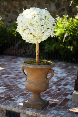 Flowers & Decor, Real Weddings, Wedding Style, Vineyard Wedding Flowers & Decor, ceremony flowers & decor