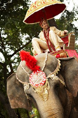 Real Weddings, Wedding Style, red, West Coast Real Weddings, Elephant, Animals, cultural real weddings, cultural weddings, indian real weddings, indian weddings