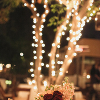 Reception, Flowers & Decor, Real Weddings, pink, red, Centerpieces, Lighting, Centerpiece, Desert, String lights, Lantern, Moss, Mason jar, Crimson, rustic romance