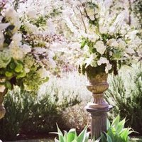 Flowers & Decor, Real Weddings, Wedding Style, green, Ceremony Flowers, West Coast Real Weddings, Vineyard Real Weddings, Vineyard Weddings, Summer Wedding Flowers & Decor, Vineyard Wedding Flowers & Decor