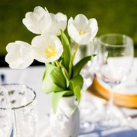 Flowers & Decor, Real Weddings, Wedding Style, white, Centerpieces, West Coast Real Weddings, Vineyard Real Weddings, Vineyard Weddings, Summer Wedding Flowers & Decor