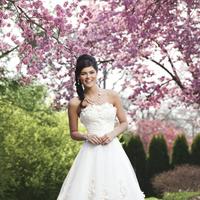 Wedding Dresses, A-line Wedding Dresses, Fashion, Strapless, Strapless Wedding Dresses, A-line, Tulle, Flower detail, Tea-length, Sincerity, tulle wedding dresses, pleated cummerbund