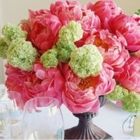 Reception, pink, green, Flowers
