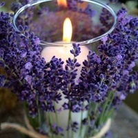 purple, Candle