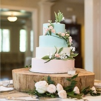 Pastel Rustic Wedding Cake