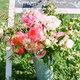 1376404126 small thumb jodi miller photog sugar magnolias florals 7