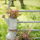 1376404131_small_thumb_katelyn-james-blossom-and-basket-florals-6