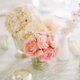 1376405195_small_thumb_jodi-miller-photog-petals-edge-florals-6
