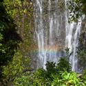1376425482 thumb photo preview maui waterfall