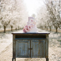 1376574208 thumb almond orchard 16 580x791