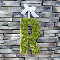 1376963130_thumb_1370285985_content_large-moss-monogram-final-1