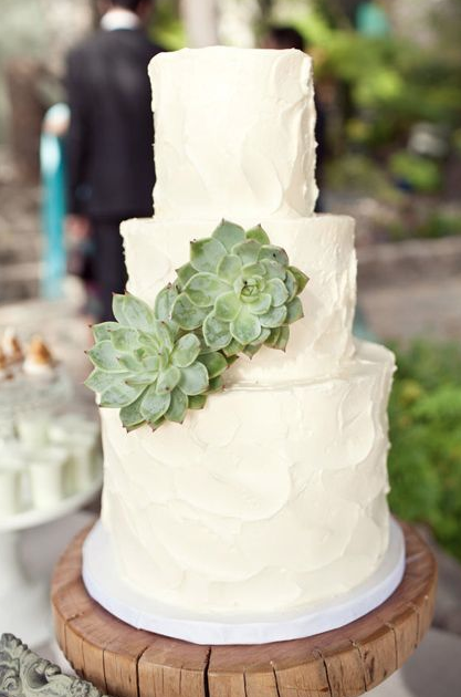 Eco-Friendly Wedding Cake