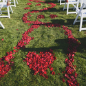 1377528075 thumb photo preview spring burgundy california winery wedding 12