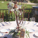 1377537127 thumb photo preview spring burgundy california winery wedding 16