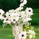 1377624468 small thumb jodi miller photog sugar magnolias florals 18 1