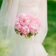1377702239_small_thumb_abby_jiu_photography5-amarlyllis-inc-flowers