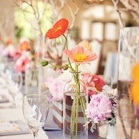 Poppy Centerpiece