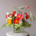 1378480420_thumb_photo_preview_sarah-winward-flowers-photog-unknown-2