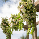 1378745745 thumb photo preview pastel california vineyard wedding 13