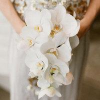 Orchid Bride Bouquet
