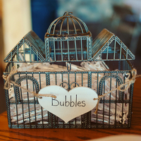 Bubbles in a Birdcage
