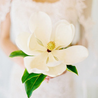 Single Stem Bouquet