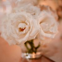 Classic Rose Centerpieces