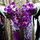 1379956828 small thumb purple and gold indian wedding 5