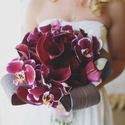 1380140583 thumb 1377527430 photo preview spring burgundy california winery wedding 3