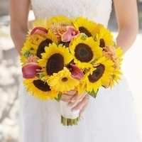Sunflowers and Calla Lilies