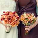 1381355464_thumb_1381264390_content_delbarr_moradi_35