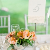 Hand-Painted Table Numbers