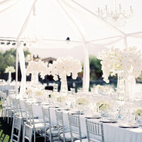 Vineyard Reception Idea