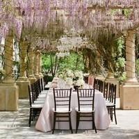 Vineyard Reception Idea