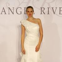 Angel Rivera Fall 2014