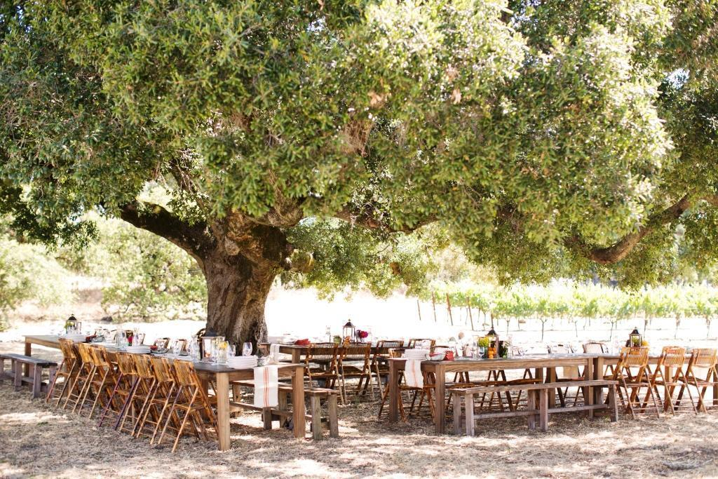 Rustic Outdoor Rehearsal Dinner