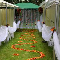 Frech ceremony wedding by Stéphanie Menu